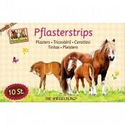 10 Pflaster Pferdefreunde