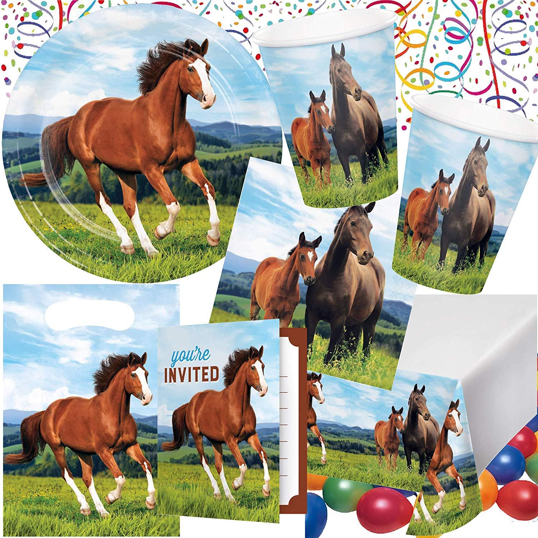 Ponys und Pferde III