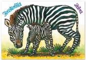 Fensterbild + Postkarte Zebra