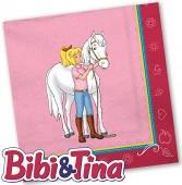108-teiliges Set: Bibi und Tina