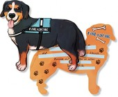 6 Einladungen Hund