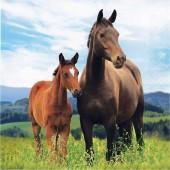16 Servietten Pferde & Pony