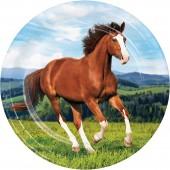 8 Teller Pferde & Pony