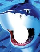 Riesen Fotoposter Haifisch
