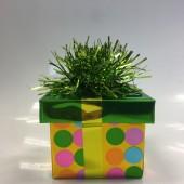 Ballongewicht Geschenk - grünes Geschenkband, grüner Deckel