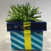 Ballongewicht Geschenk - grünes Geschenkband, blauer Deckel